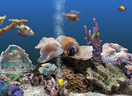 Marine Aquarium Deluxe Screensaver Screenshot